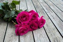Groupe de roses roses photo libre de droits
