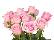 Groupe de roses roses fraîches image stock