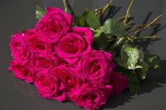 Groupe de roses rouges avec des baisses de l'eau de pluie Photo stock