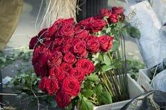 Groupe de roses rouges en Sant Jordi Photo libre de droits