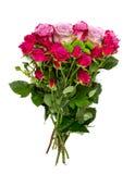 Groupe de roses sur le blanc images libres de droits