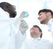 Groupe de scientifiques regardant les résultats de leur expérience photo libre de droits