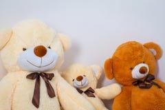 Groupe de se reposer mignon d'ours de nounours Photographie stock libre de droits