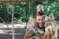 Groupe de singes jouant avec un homme images stock