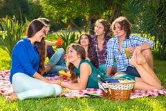 Groupe de six amis ayant un pique-nique dans le parc Photographie stock