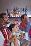 Groupe de sourire d'amis ayant la bière tout en regardant la rencontre Image libre de droits