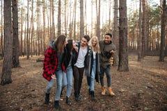 Groupe de sourire d'amis marchant dehors dans la forêt Images stock
