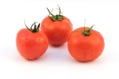 Groupe de tomate Photo libre de droits