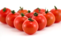 Groupe de tomate Photographie stock