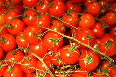 Groupe de tomates-cerises Photos stock