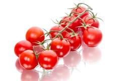 Groupe de tomates-cerises sur le blanc Photos libres de droits