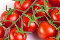 Groupe de tomates fraîches savoureuses rouges sur le fond blanc Image stock