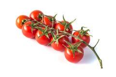 Groupe de tomates fraîches savoureuses rouges sur le fond blanc Photographie stock libre de droits