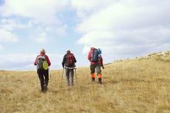 Groupe de touristes avec des sacs à dos sur une traînée de montagne photos libres de droits