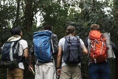 Groupe de trekking d'amis ensemble dans une forêt Images stock