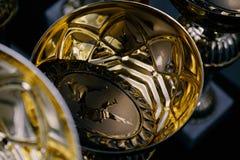 Groupe de trophées Image stock