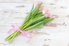 Groupe de tulipes dans le rose Image stock