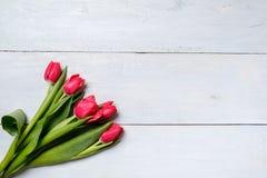 Groupe de tulipes rouges sur la table en bois bleue Carte de maquette de bannière avec l'espace de copie pour la félicitation, la image libre de droits
