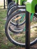 Groupe de vélo pour le loyer Photographie stock libre de droits