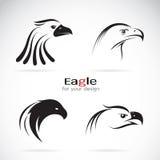 Groupe de vecteur de conception de tête d'aigle Photographie stock