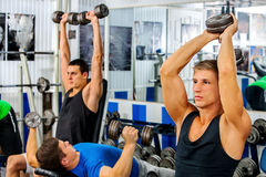 Groupe des hommes travaillant son corps au gymnase Image libre de droits