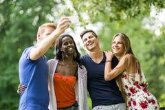 Groupe des jeunes et de couples prenant des selfies en nature Photos stock