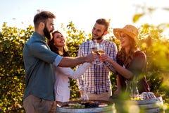 Groupe des jeunes goûtant le vin dans l'établissement vinicole près du vignoble photo stock