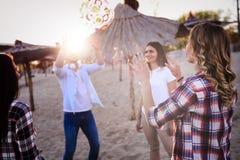 Groupe des jeunes heureux appréciant des vacances d'été Photos stock