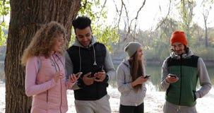 Groupe des jeunes utilisant le lever de soleil extérieur de téléphone intelligent, matin Autumn Park Near Tree de communication d banque de vidéos