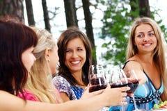 Groupe du vin potable de jeunes femmes Photo stock