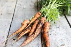 Groupe frais de carottes sur le bois Groupe de carottes fraîches avec l vert Photographie stock libre de droits