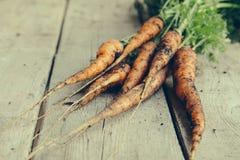 Groupe frais de carottes sur le bois Groupe de carottes fraîches avec l vert Photo libre de droits
