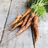 Groupe frais de carottes sur le bois Groupe de carottes fraîches avec l vert Photos libres de droits