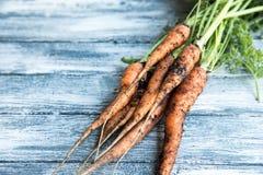 Groupe frais de carottes sur le bois Groupe de carottes fraîches avec l vert Images libres de droits