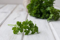 Groupe frais de parsleyand un écheveau de fil pour lier Photographie stock libre de droits
