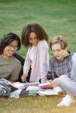 Groupe heureux d'étudiants multi-ethniques étudiant dehors Images stock