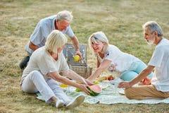 Groupe heureux d'aînés en parc dans un pique-nique Photos libres de droits