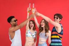 Groupe heureux d'amis avec la position de bière d'isolement Photo libre de droits