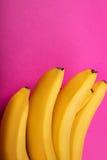 Groupe jaune frais de bananes d'isolement sur les bananes roses et mûres Image stock