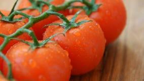 Groupe lavé frais de tomates-cerises clips vidéos