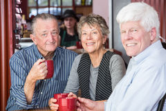Groupe mûr d'amis dans le café Photo stock