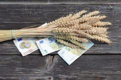 Groupe mûr d'oreilles de blé avec d'euro billets de banque d'argent d'isolement sur le blanc Image libre de droits