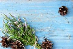 Groupe mignon de Bruyère en bois naturelle avec quelques cônes piny sur le fond en bois Éléments rustiques traditionnels de décor Photographie stock libre de droits