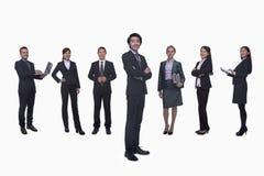 Groupe moyen de gens d'affaires dans une rangée, portrait, intégral, tir de studio Images libres de droits
