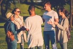 Groupe multi-ethnique d'amis ayant l'amusement dans un parc Images libres de droits