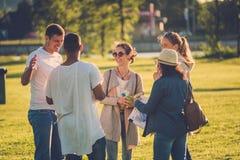 Groupe multi-ethnique d'amis ayant l'amusement dans un parc Photo stock