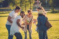 Groupe multi-ethnique d'amis ayant l'amusement dans un parc Photos libres de droits