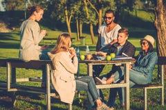 Groupe multi-ethnique d'amis buvant du café et causant en parc Photo libre de droits