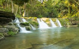 Groupe naturel de San Antonio Waterfall Belize Image libre de droits