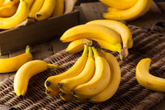 Groupe organique cru de bananes image libre de droits